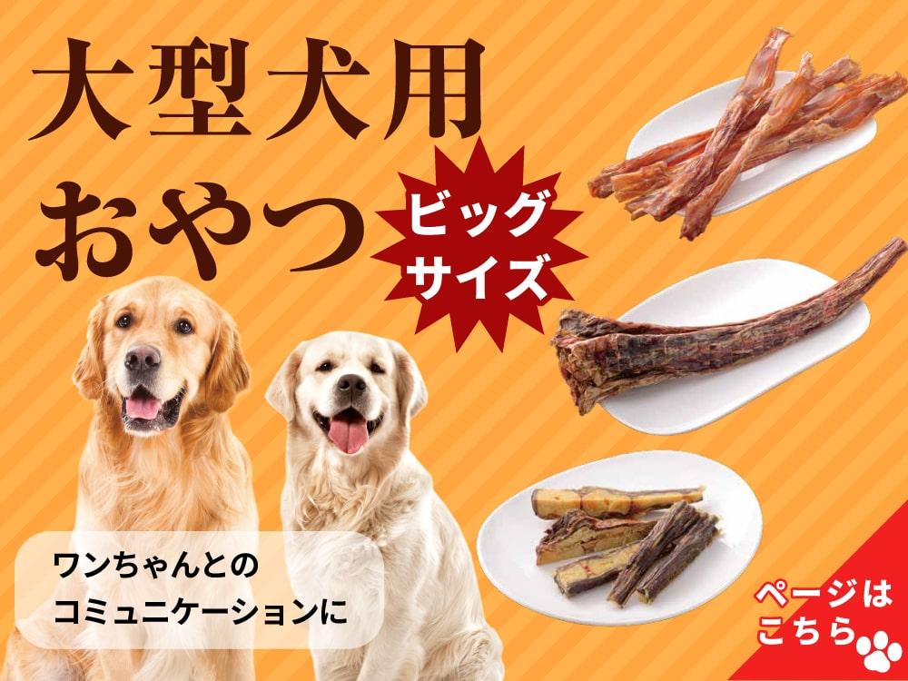 大型犬用おやつ